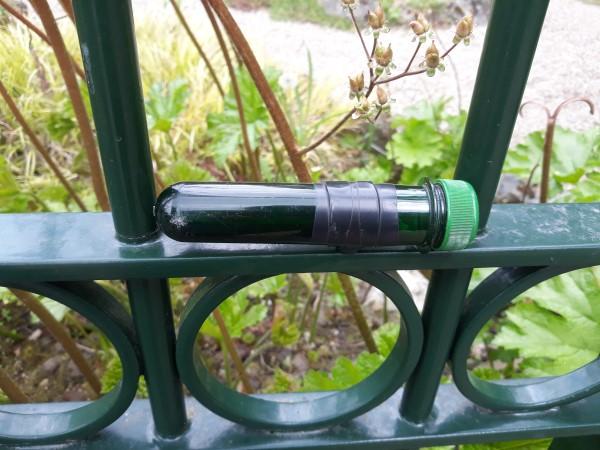 Alles over geocachen actief wandelen schatzoeken in Nederland, schatzoeken met GPS, GPS speurtocht