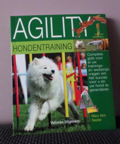 Boekenfestijn, agility