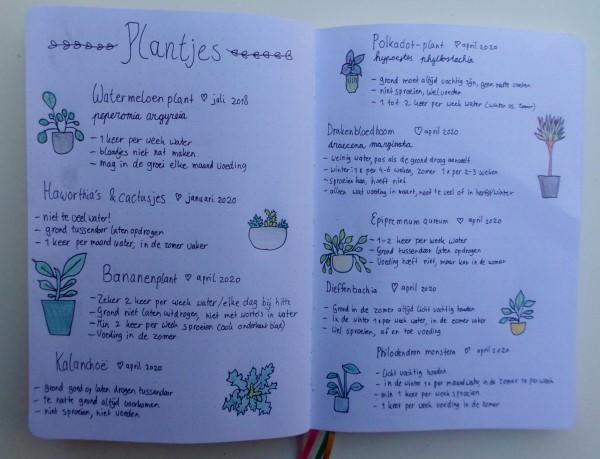 Bullet journal ideeen, bullet journal inspiratie, een kijkje in mijn creativity journal, handlettering, doodles, plantenoverzicht in bullet journal, plant journal