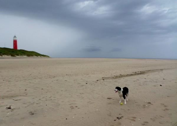 Vakantie op Texel, waddeneiland, praktische tips, aanraders, vuurtoren