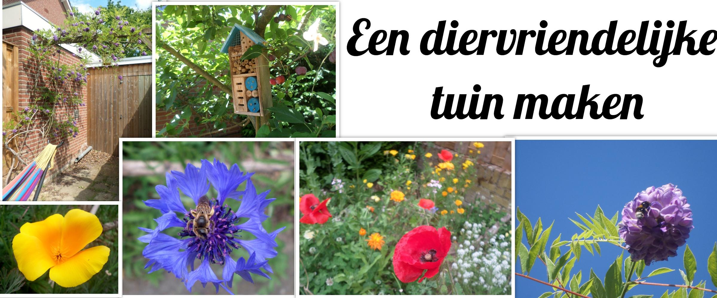 een diervriendelijke tuin makken, vlindertuin, vogeltuin, tuin bijvriendelijk maken, insectenhotel, bijenhotel